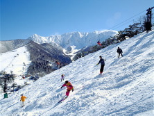 鳥取・スキー・スノーボード